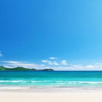 Caribbean Passport (episode #16-08)